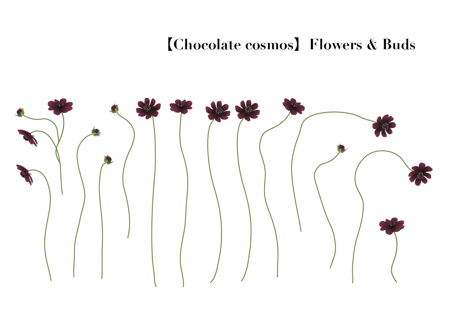 Flower005-02