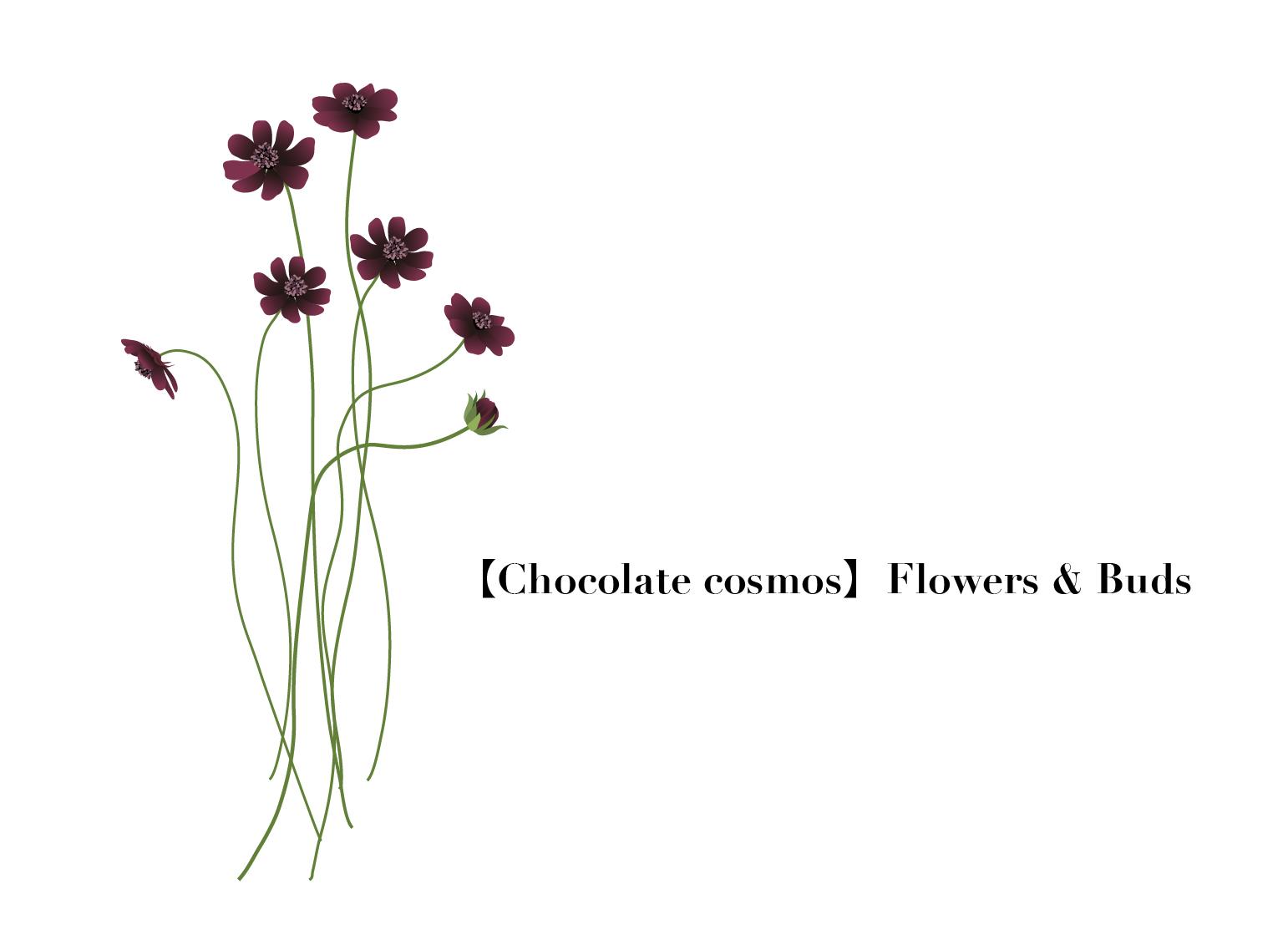 Flower005-03