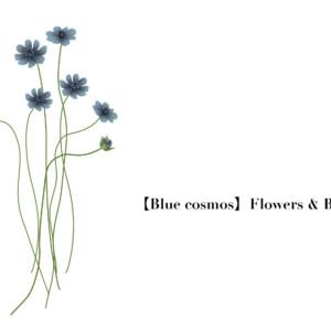 Flower006-03