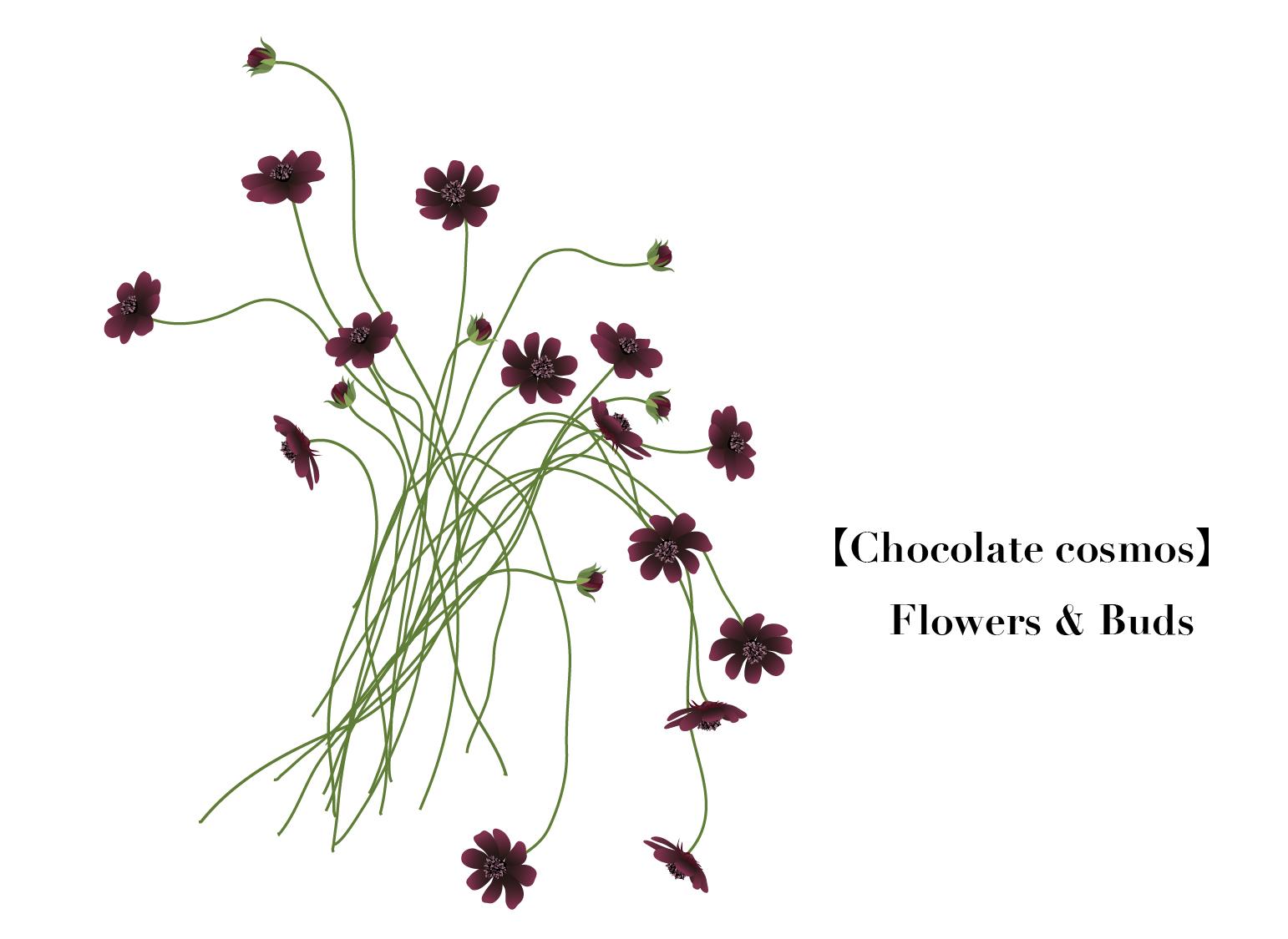 Flower005-05