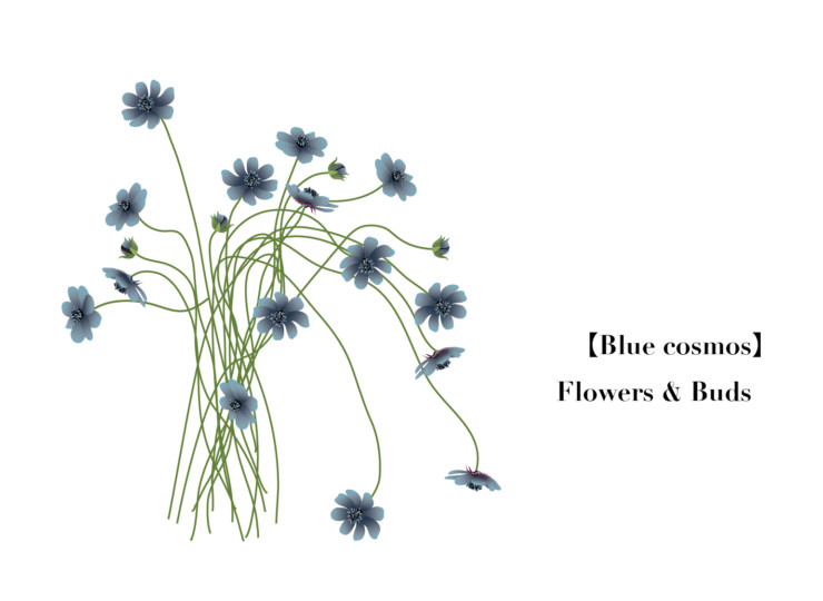 Flower006-04