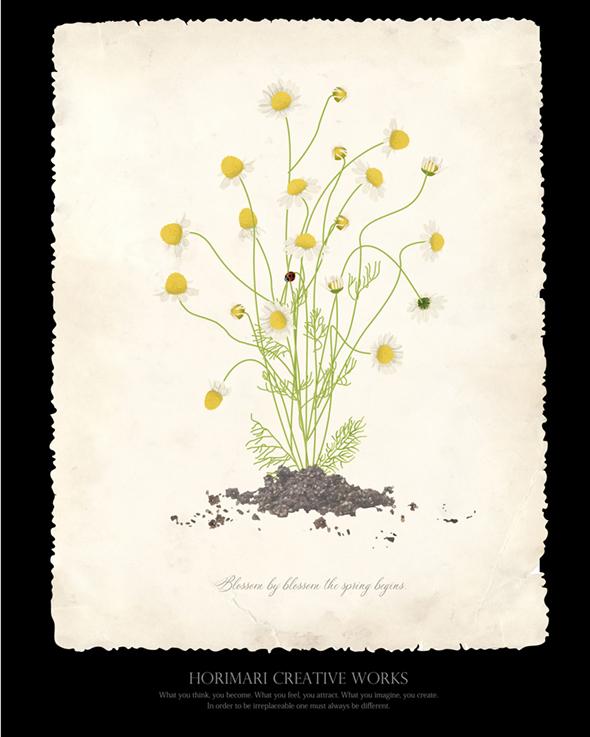 Flower007-03